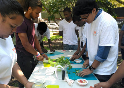 Youth – DYI Sofrito/Sazon and Herb Lab at Terrace