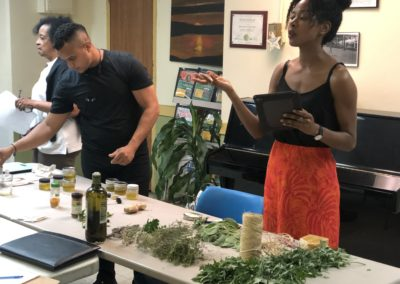 Seniors – Mugwort and Other Herbs for Aches and Pains at Marble Hill